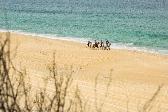 Melides, Portugal: Praia