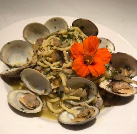 St. Catharines, كندا:  Spaghetti alle Vongole [House made spaghetti, fresh clams, oregano and vino bianco]