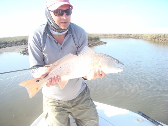 Pawleys Island, SC: Capt. Pate found and coached me to this nice Red Drum. Not easy to do on a fly rod. 2 for 2
