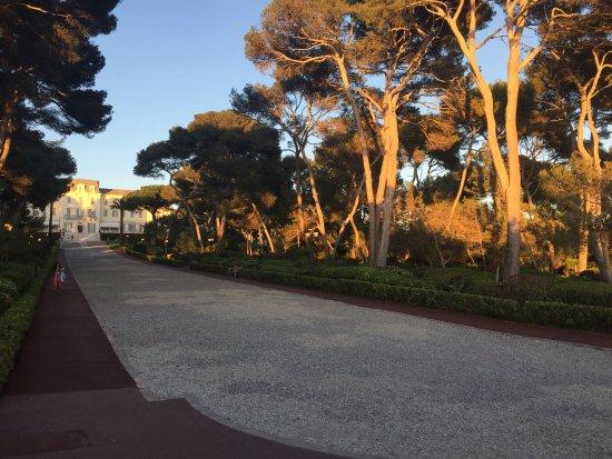 Hotel du Cap Eden-Roc: Der Park in der Abendsonne....