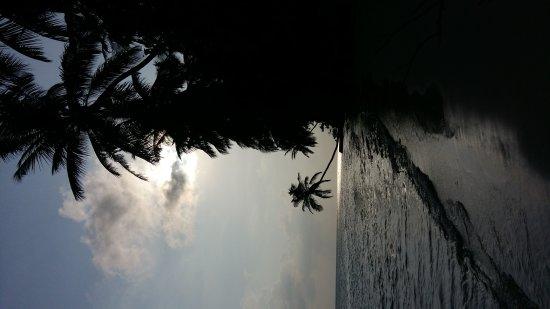 Rinbudhoo: 20170410_164727_large.jpg