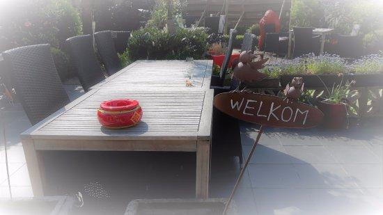 Boom, Belgio: WELKOM OP HET RUIME TUINTERRAS