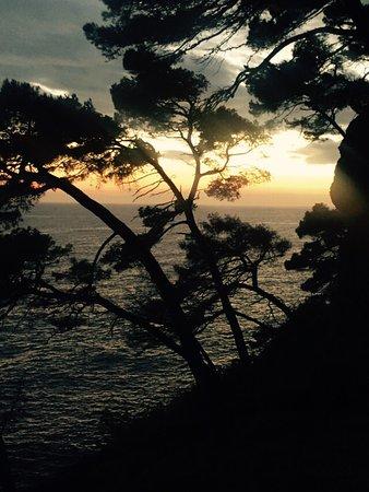 Parco Naturale Regionale di Portofino: photo0.jpg