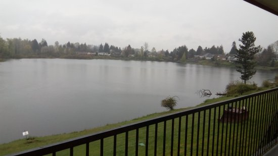 Centralia, WA: View of the lake right outside our door