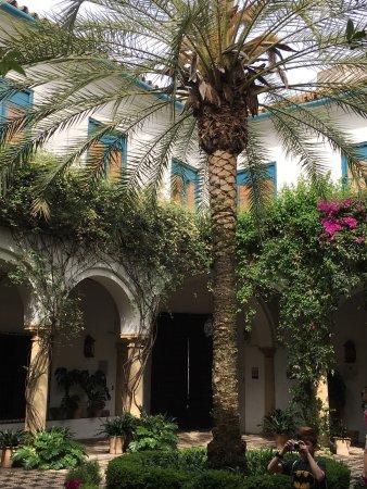 Palacio-Museo de Viana: photo0.jpg