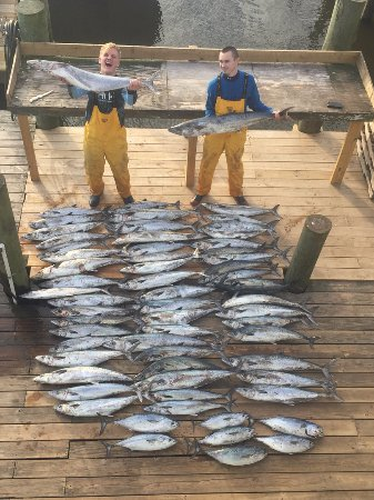 Southport, NC: Holy Mackerel! What a great day with just over 700 pounds of fish!