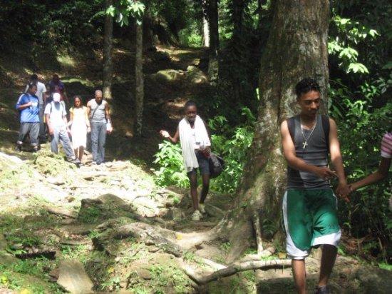 Maracas Falls : Happy People