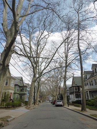 Beals Street, Brookline