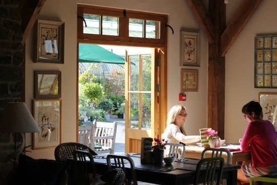 Lostwithiel, UK: The cafe is a great place for a delicious lunch or just a coffee and a chat with a friend