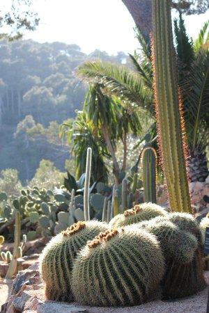 Jardi Botanic de Cap Roig