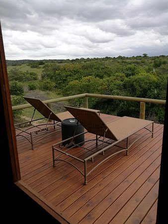 Amakhala Game Reserve, Sudáfrica: room with a view