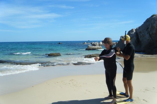 Cabo Pulmo Marine Preserve: Easy in to the ocean. Wet suit is optional Water temp varies according to time of year