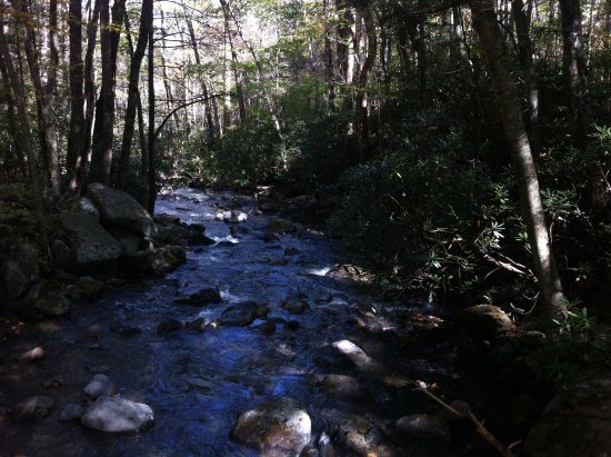 Roaring Fork Motor Nature Trail, Gatlinburg, TN