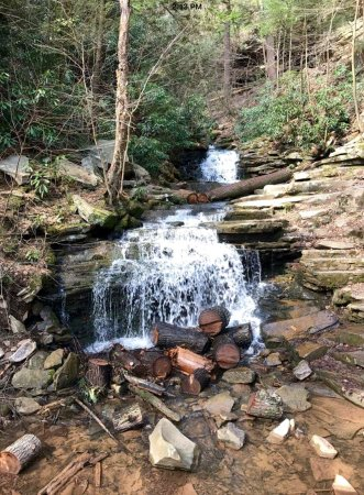 James Creek, Pensilvanya: Few small waterfalls