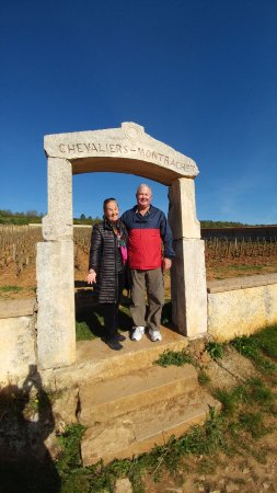 Burgundy Discovery: On Cote D'Or Wine Tour, Beaune, France