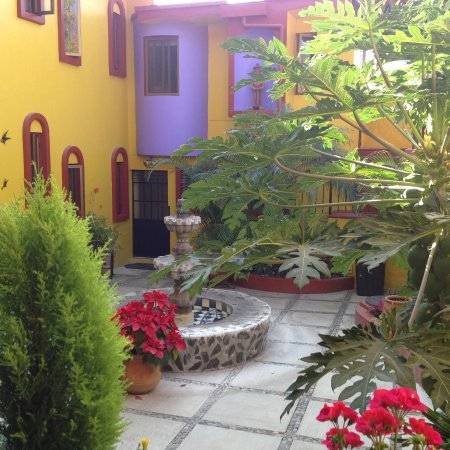 Ajijic Suites on Hidalgo Photo