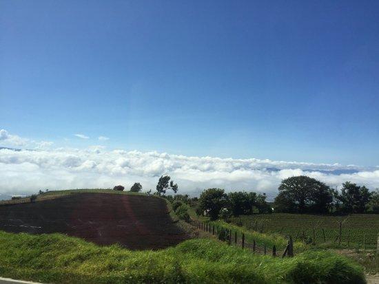 Province of Cartago照片