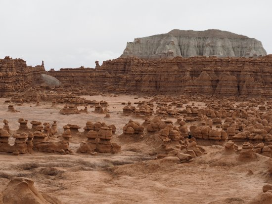Goblin Valley State Park: Stunning view of the gnomes in the valley