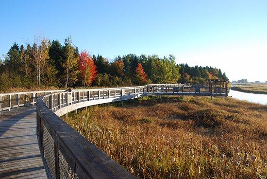 Beresford, كندا: La passerelle de Beresford