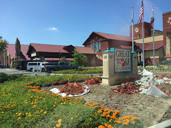 Picture Of Great Wolf Lodge Southern California Garden Grove Garden Grove