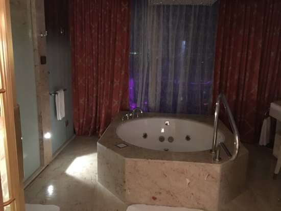 In room jacuzzi with separate toilets with bidets for Comport room design