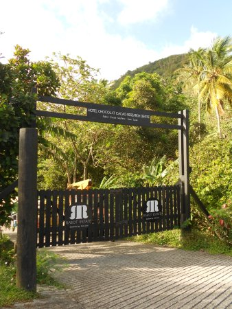 Boucan by Hotel Chocolat: This is the entrance to the cocoa bean tour