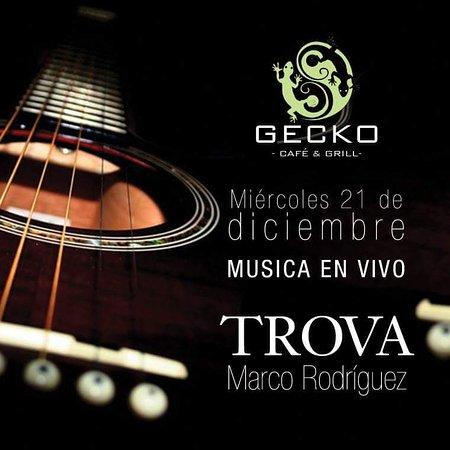 Province of Limon, Costa Rica: Musica en Vivo