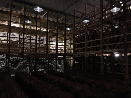 Loretto, KY: Cellar