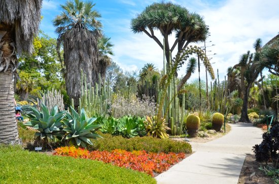 The Huntington Desert Garden: Desert Garden