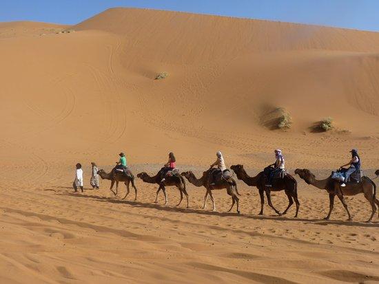 Hassilabied, Morocco: ruta camello