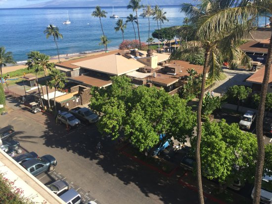 Deluxe Ocean View Picture Of The Westin Maui Resort