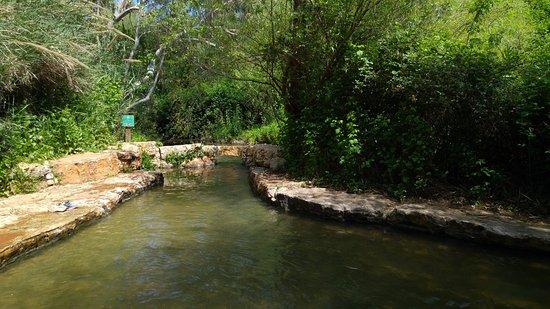 Iyon Stream Nature Reserve: на южном конце
