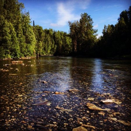 Talkeetna wilderness river fishing guides all you need for Clear creek fishing