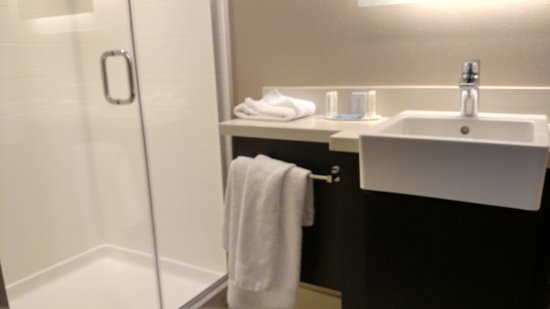 Carle Place, NY: Bathroom was spacious with nice amount of counter space