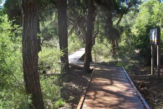 Greenbushes, Australia: Boardwalk around pool