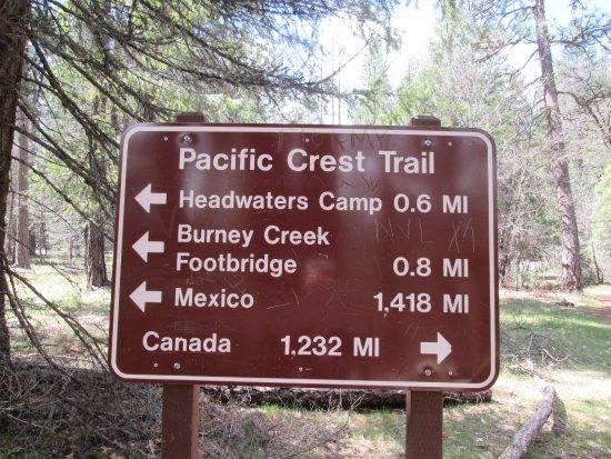 Burney, Califórnia: Funny trail sign