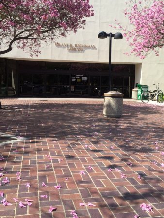 Thousand Oaks, Kalifornien: The entrance to the library
