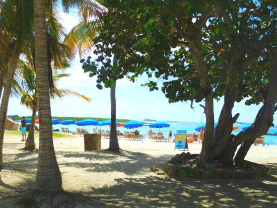 Tropical Wave: Comfortable and quiet beach with easy parking.