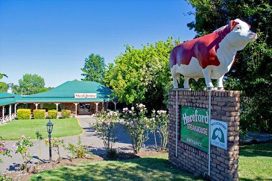 Glen Innes, Австралия: Hereford Steakhouse Day
