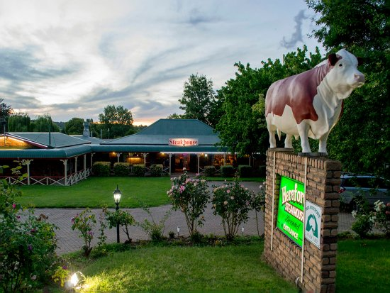 Glen Innes, Australia: Hereford Steakhouse Night