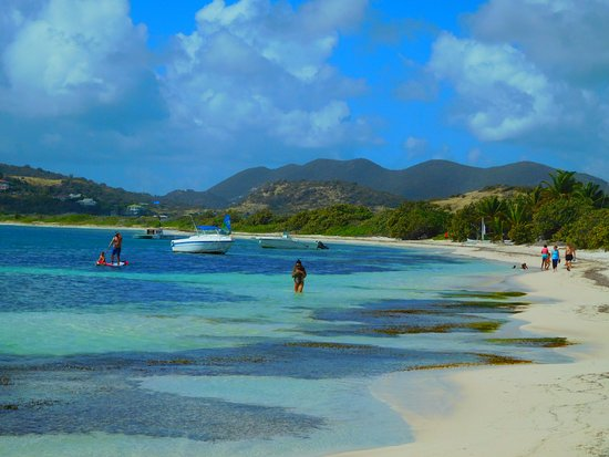 Tropical Wave: Protected bay is good for families.