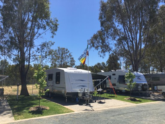 Murray River Holiday Park : Powered Site