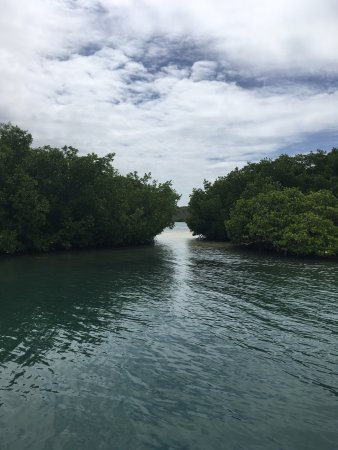 Le Francois, Martinica: photo0.jpg