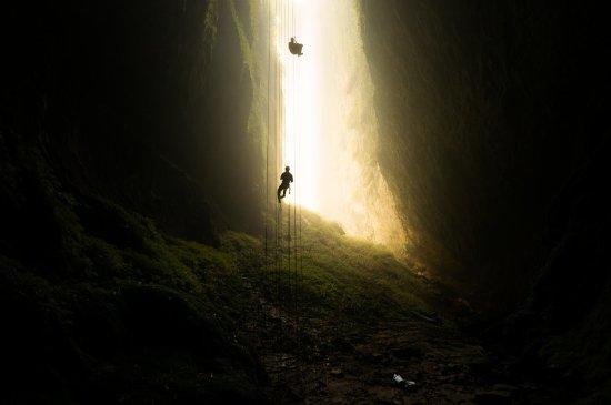 Hamilton, New Zealand: Waitomo Caves, Waikato New Zealand