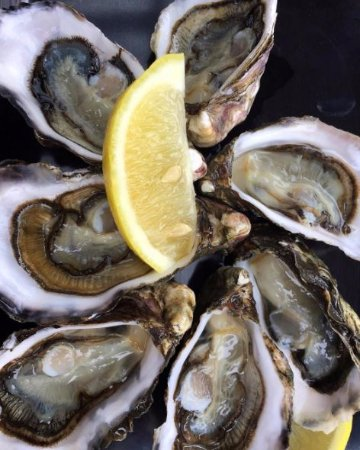 Coles Bay, Australia: Fresh oysters!
