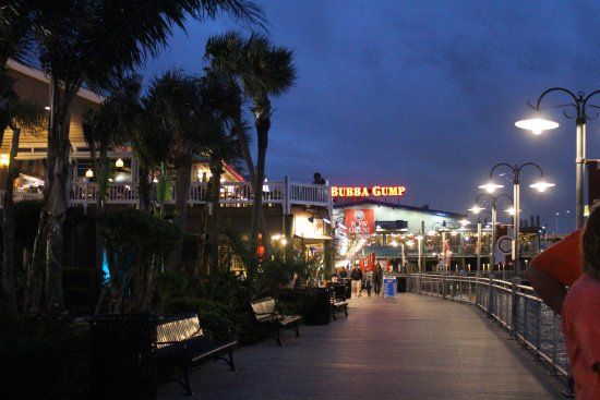 Kemah, TX: Take a stroll along the water...lots of fish to see!