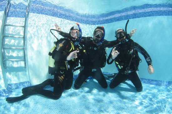 Diving Course in Playa de las Americas