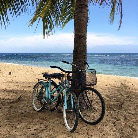 Punta Uva, Costa Rica: IMG-20170419-WA0003_large.jpg