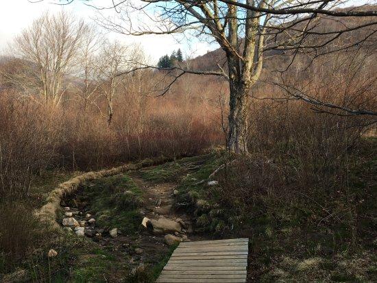 Brevard, NC: Upper Falls Trail