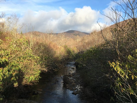 Brevard, NC: Crossing the creek